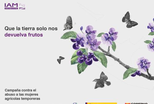 El IAM lanza una campaña para prevenir y erradicar la violencia de género contra las mujeres temporeras