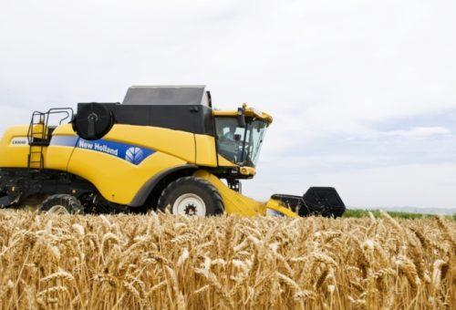 Aragón destinará más de 6,5 millones de euros a la contratación de seguros agrarios