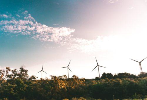 El Gobierno de Aragón convoca a través de los fondos FEDER más de 7´5 millones en ayudas para fomentar las energías renovables